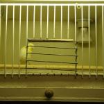 3-cage-hopital-surtout-pour-sechage-apres-le-lavage.jpg
