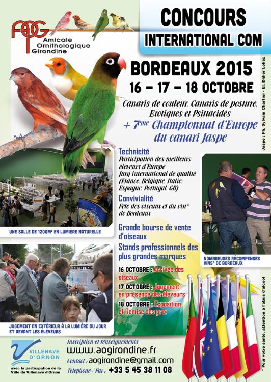 Bordeaux2015 (8)
