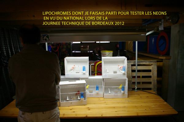 L IMGP6587 COP TEST1