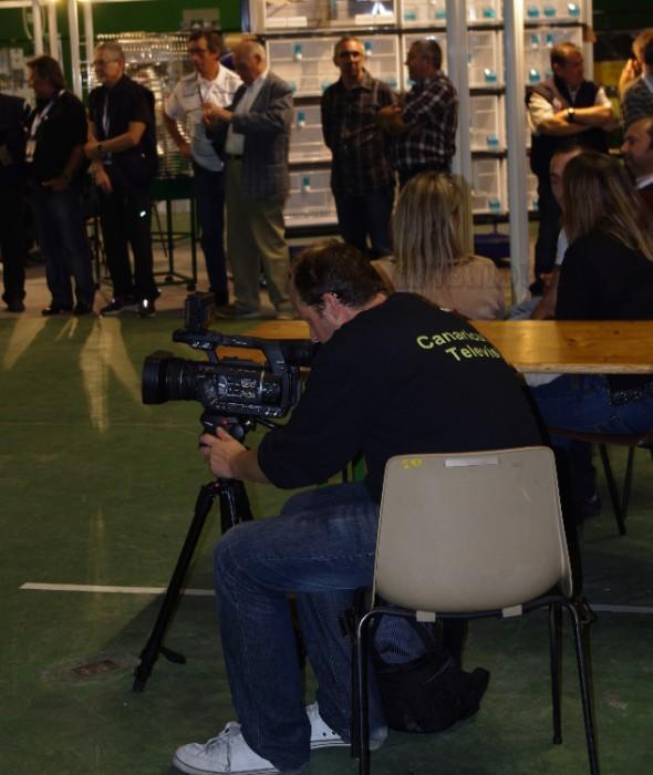 IMGP6552 CANARICULTURA TV