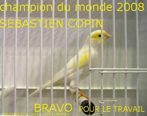 expo-concours-eden-copin-copie